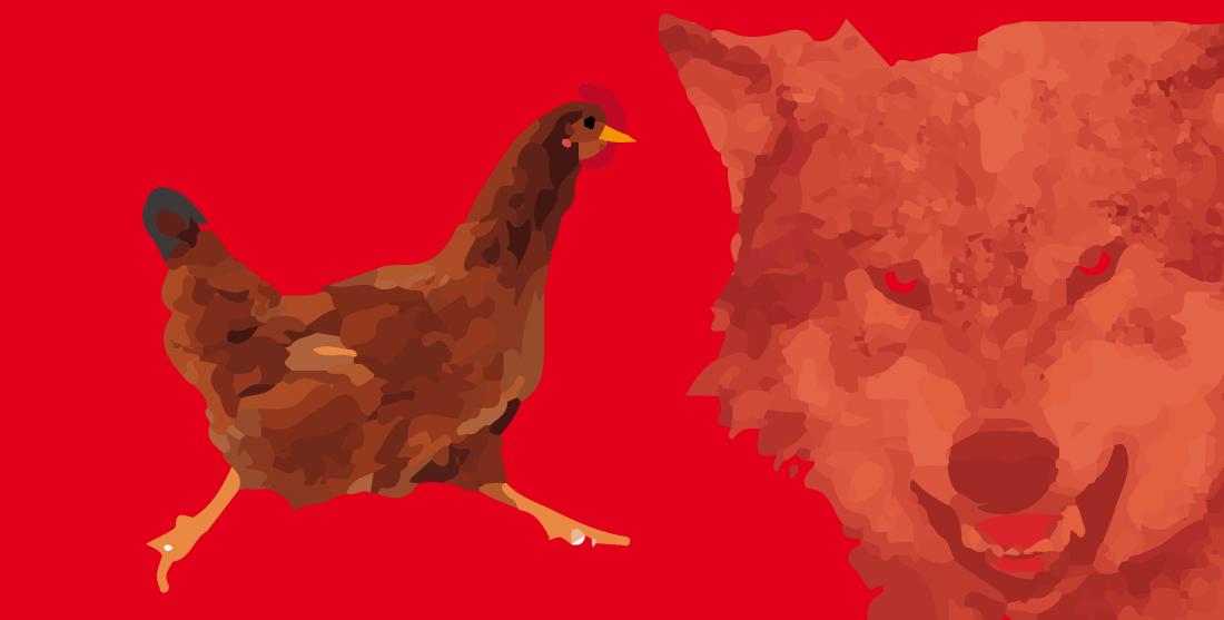 favola-due-galline